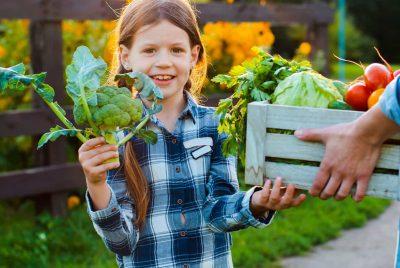 How To Establish An Organic Garden-min
