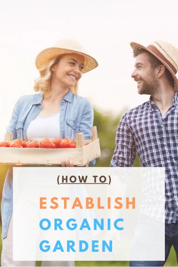 Establishing your own organic garden