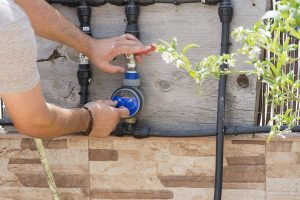 drip irrigation for vegetable garden-min