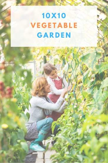 Build a 10by10 vegetable garden