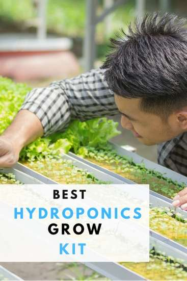 Top Hydroponic Grow Kits Guide (3)