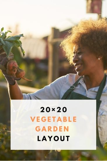 20by20 Vegetable Garden Layout - PIN