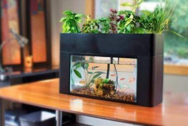 Aquasprout Aquaponics Garden Kit Review