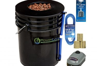 Best DWC Deep Water Culture Hydroponic Systems Review