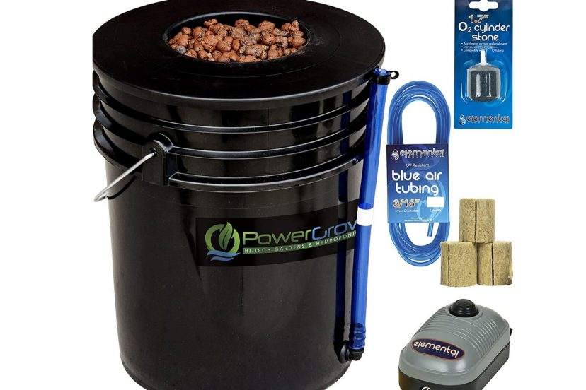 Best DWC Hydroponic System Review