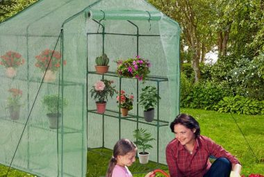 """BestMassage Greenhouse For Outdoors Greenhouse Plastic Mini Greenhouse Kit L56.5""""W56.5""""H76"""