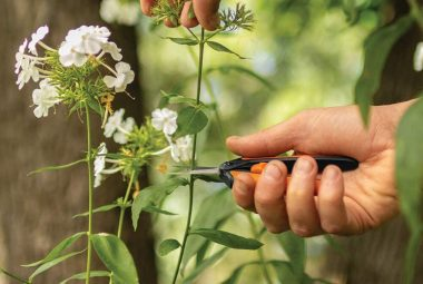 Fiskars Softouch Micro-Tip Pruning Snip Review