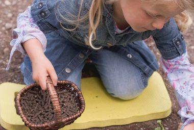 What Is Organic Fertilizer