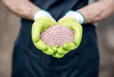What Organic Fertilizer Is High In Nitrogen