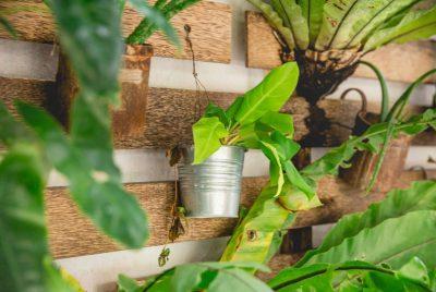 Best (TOP) Vertical Garden Planters