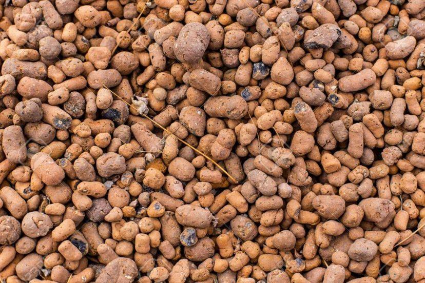 Top Grow Media: Clay Pebbles Vs Grow Stones