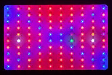 Best Full Spectrum Grow Lights
